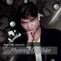Top những bài hát hay nhất của Phương Chi Bảo