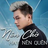 Nên Chờ Hay Nên Quên (Remix Single) - Phan Duy Anh
