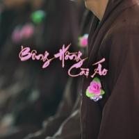 Bông Hồng Cài Áo - Various Artists