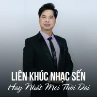 LK Nhạc Sến Con Đường Xưa Em Đi Hay Nhất Mọi Thời Đại - Various Artists