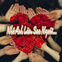 Nhớ Anh Làm Sao Nguôi ? - Various Artists