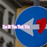 Em Đi Tìm Tình Yêu - Various Artists