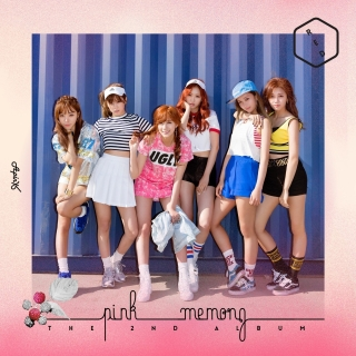 Pink MEMORY (Vol. 2) - A Pink
