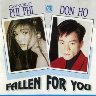 Fallen For You - Don Hồ