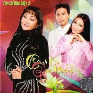 Tân Cổ Đặc Biệt 2 - Cánh Cò Quê Hương - Various Artists