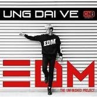 The Unfinished Project EDM (Single) - Ưng Đại Vệ