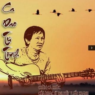 Ca Dao Tự Tình (Tình Khúc Nguyễn Tuấn Khanh) - Various Artists