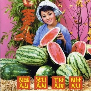 Ngày Xuân Thăm Nhau - Various Artists