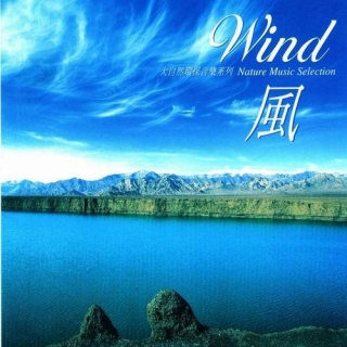 Nature Music Selection CD1 - Wind - Various Artists