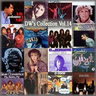 DW's Collection Vol.14 - Various Artists