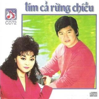 Tím Cả Rừng Chiều - Various Artists