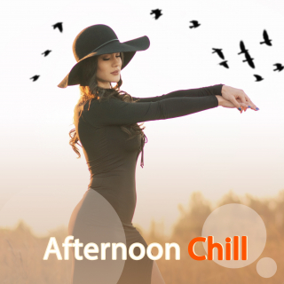 Afternoon Chill - Various Artists