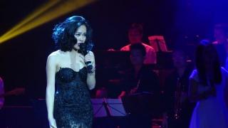 Giấc Mơ Mang Tên Mình (Live Concert) - Hoàng Quyên