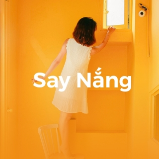 Say Nắng - Various Artists