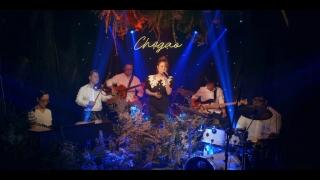 Xin Lỗi 2 (Acoustic) - Thái Trinh