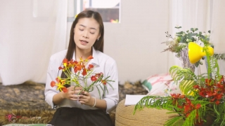 Bâng Khuâng Cánh Phượng - Quỳnh Như Bolero